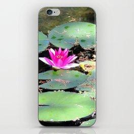 Beijing Imperial garden | Jardin Impérial iPhone Skin
