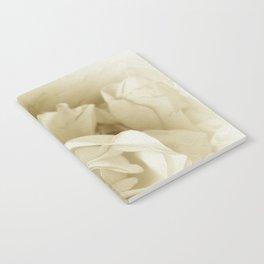 Vintage Elegant Shabby Chic White Rose Script Notebook