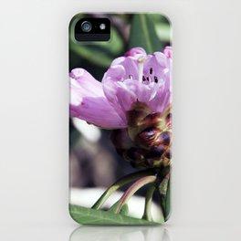 Rhododendren in bloom iPhone Case