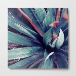 Yucca Phucca Metal Print