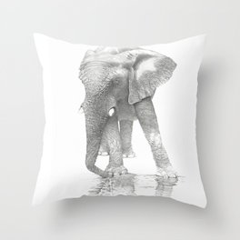 African Elephant, Loxodonta Africana Throw Pillow