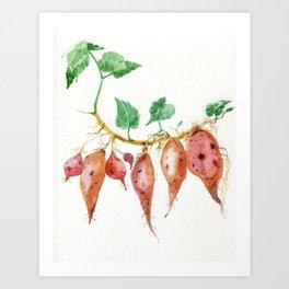Sweet potato Art Print