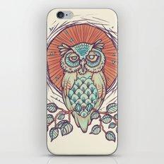Owl on branch iPhone & iPod Skin