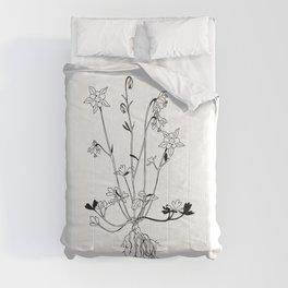 Columbine Comforters