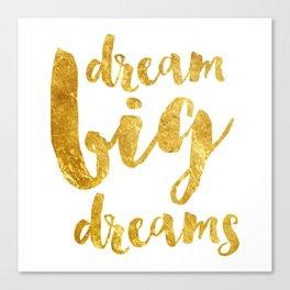 dream big dreams Canvas Print