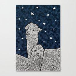 Alpacas on a starry night Canvas Print
