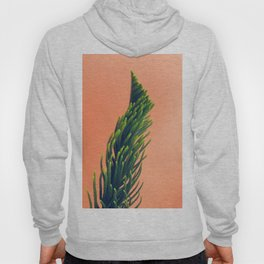 Complementary Colors Green Salmon Pink Against Background Hoody