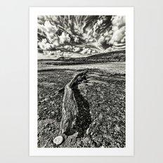 Driftwood Mono Art Print