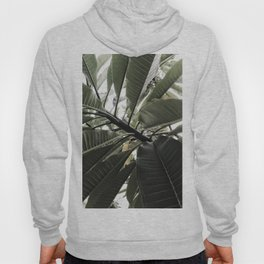 Natural Background 77 Hoody