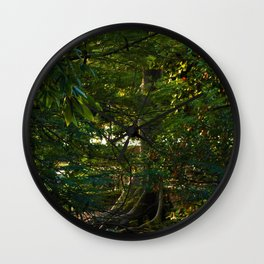 Arbor Veteris Wall Clock