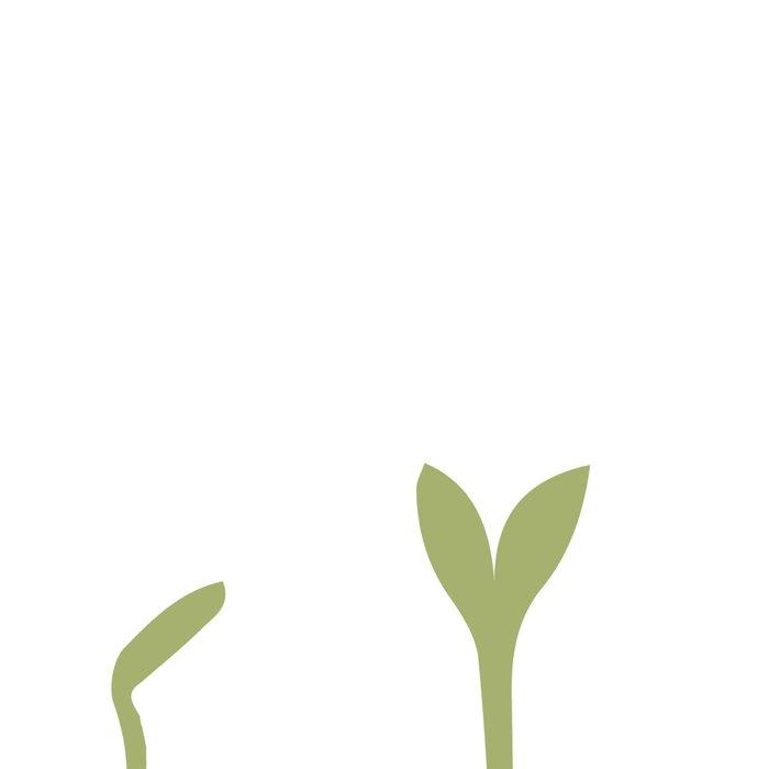 Growth Leggings