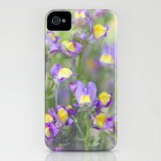 Smell of Summer Beginning iPhone (4, 4s) Slim Case
