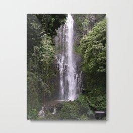 Tall Maui tropical waterfall Metal Print