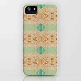 Gypsy Caravan 3 iPhone Case