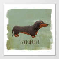 dachshund Canvas Prints featuring Dachshund by 52 Dogs