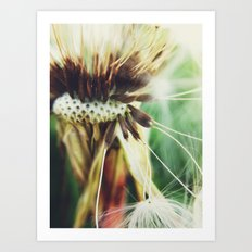 Dandelion: Seeds Vertical Art Print