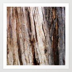 Shiver Me Timbers - 1 Art Print