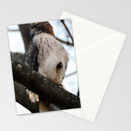 Watchful Stationery Cards