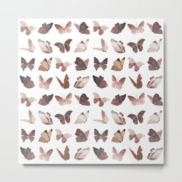 New Butterflys! Metal Print