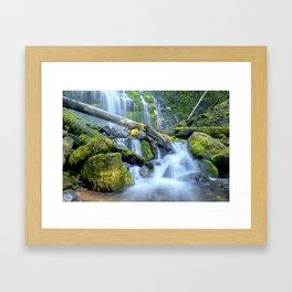 Waterfall - Proxy Falls Framed Art Print