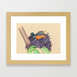 Colorful Nest Framed Art Print