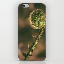Curled Bracken frond (Pteridium aquilinum) in spring. Norfolk, UK iPhone Skin
