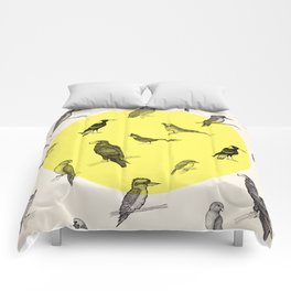 All the birds Comforters