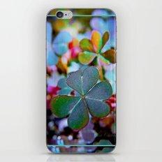 Heart clover iPhone & iPod Skin