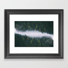 Forest Reflections XIV Framed Art Print