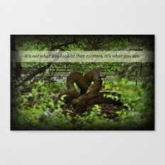 It's What You See Canvas Print