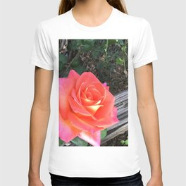 Rose On a fence T-shirt