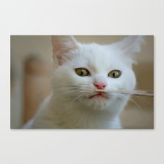 What is this??? Canvas Print