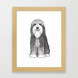 Bearded Collie Framed Art Print