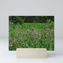 Legacy of the Highlands Mini Art Print