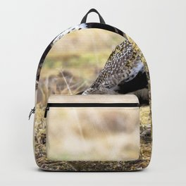 Watercolor Bird, European Golden Plover 01, Geysir, Iceland, Hunting the Vents Backpack
