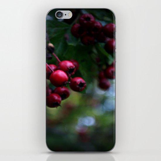 Pyracantha iPhone & iPod Skin