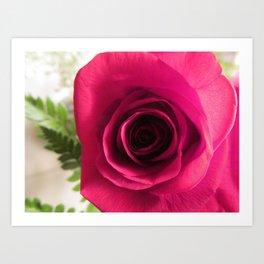 Lost in a rose Art Print
