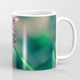 Purple Bloom in Rockwoods Reservation (MDC Area) Missouri Coffee Mug