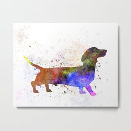 Short Haired Dachshund 01 in watercolor Metal Print