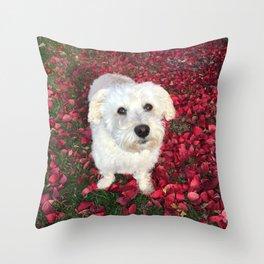 Maya in Red Throw Pillow