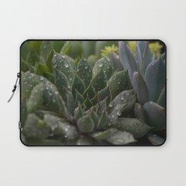 Rained on Cacti Laptop Sleeve