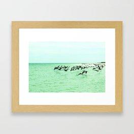 pelican't Framed Art Print