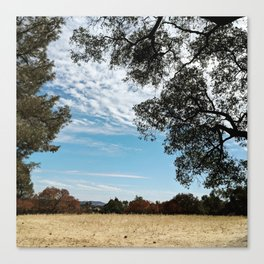 Blue Skies (And Dry Fields) Canvas Print