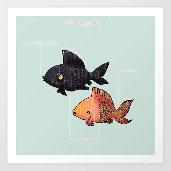 Anatomy Of A Goldfish Art Print