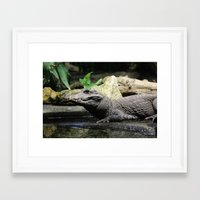 crocodile Framed Art Prints featuring Crocodile by Falko Follert Art-FF77