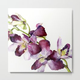 Radiant Orchids: Magenta Dendrobiums (Flipped Orientation) Metal Print
