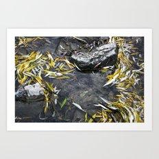 Sirenity Art Print