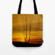 Lone tree sunset Tote Bag