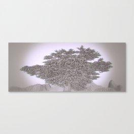 Lebanon Cedar /ˈvɒksɛl/ Panavision Canvas Print