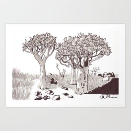 Quiver Tree Forest - Namibia Art Print